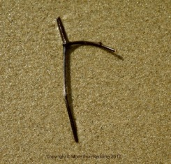 The stick 'r' was found on the beach